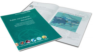 A4 Public Consultation document for NHS